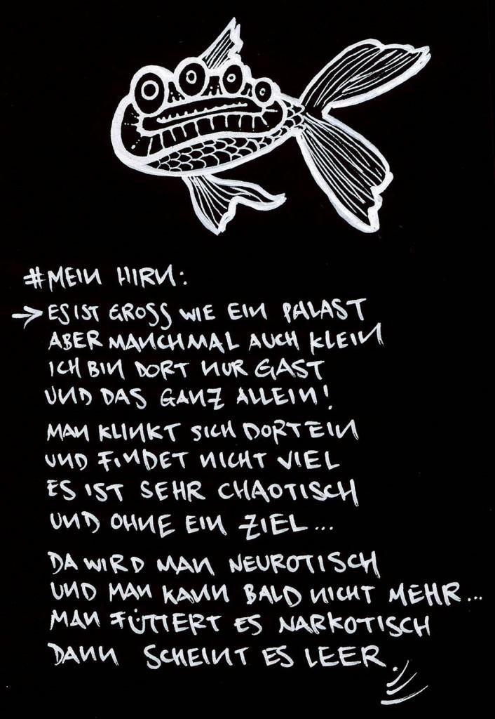 © falk v. schönfels